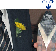 Business of Excellence Award showing crack on it after it was dropped.